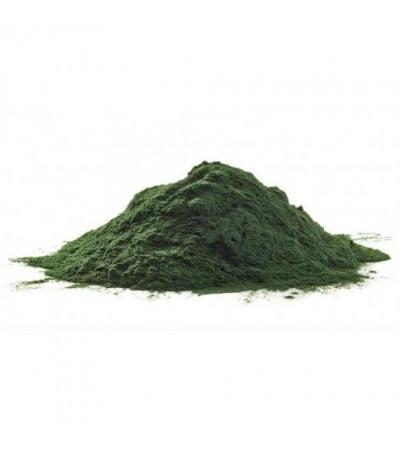 Chlorella Organic Powder 500gram