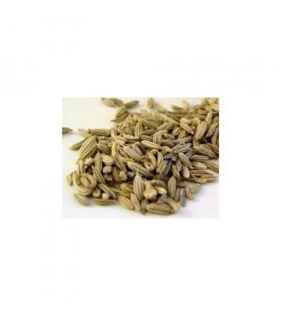 Fennel Seeds 100 grams